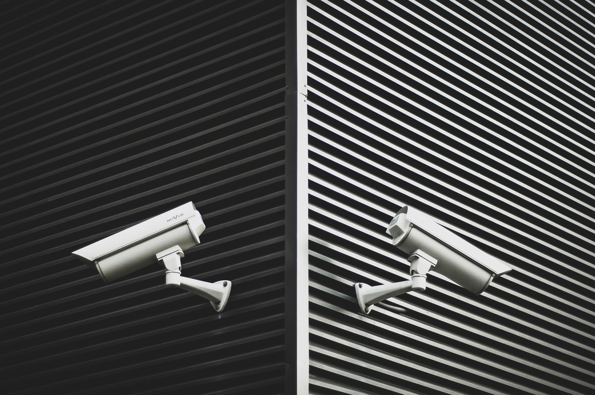 3 Proxy Search Engines for Superior Privacy
